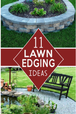 Check out these Beautiful deging ideas for flower beds, pathways and yard edges! gardenlovin.com