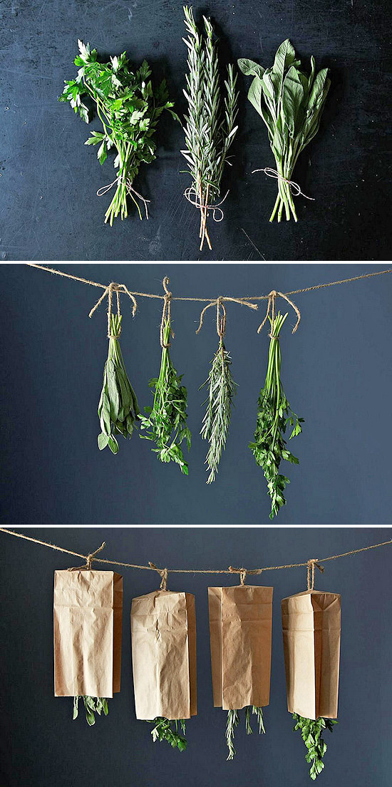drying-herbs-56