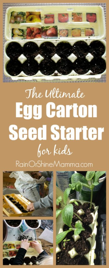 The Ultimate Egg Carton Seed Starter for Kids. This indoor seed starter is super easy for kids to make, and works as a visual reminder of what has been planted. Such a fun spring seed activity to do together! From Rain or Shine Mamma.