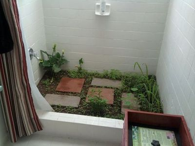 indoor garden in a shower