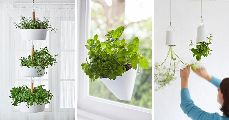 Indoor Garden Ideas - Hang Your Plants From The Ceiling & Walls