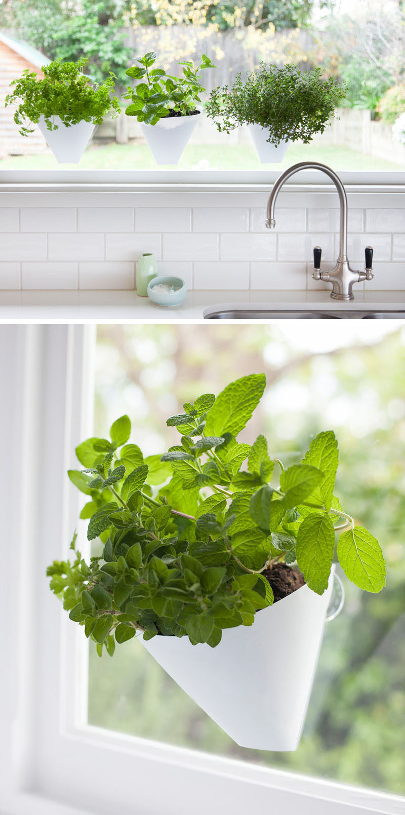 Indoor Garden Ideas - Hang Your Plants From The Ceiling & Walls // These planters suction cup to the window.