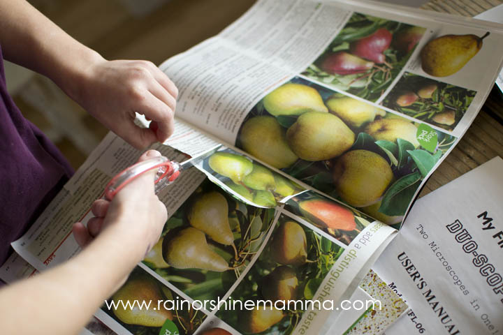 Cutting Out Pictures for Egg Carton Seed Starter. Rain or Shine Mamma