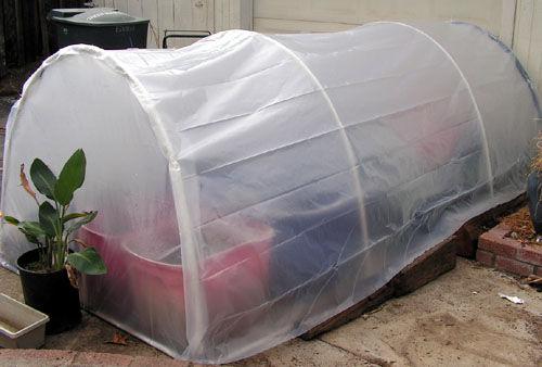 5 x 5 Home Greenhouse