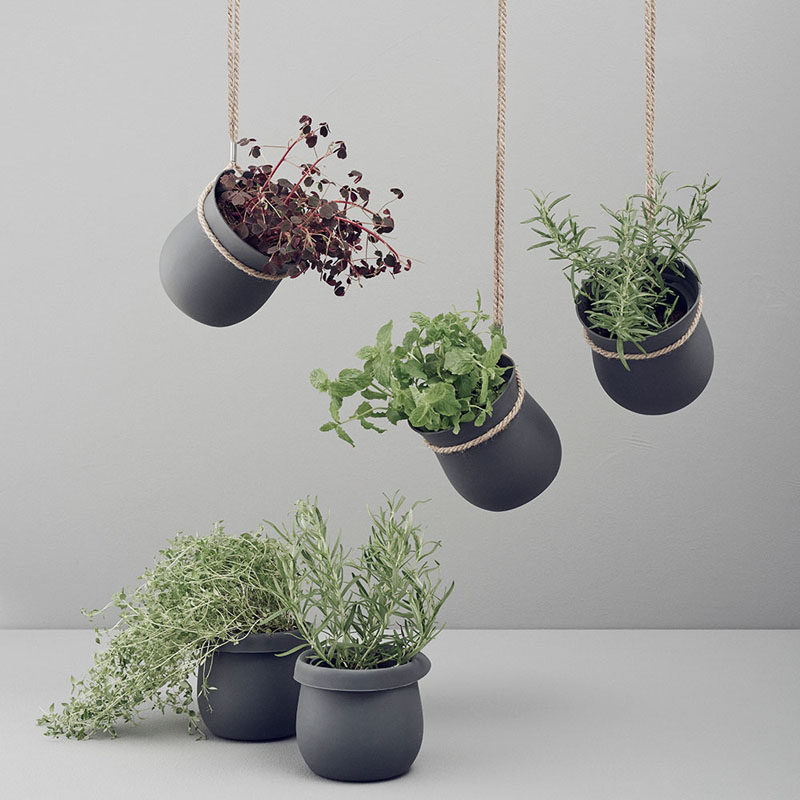 Indoor Garden Ideas - Hang Your Plants From The Ceiling & Walls // Matte black hangers wrapped in twine make a fabulous statement in your space and give your plants a stylish place to hang out.