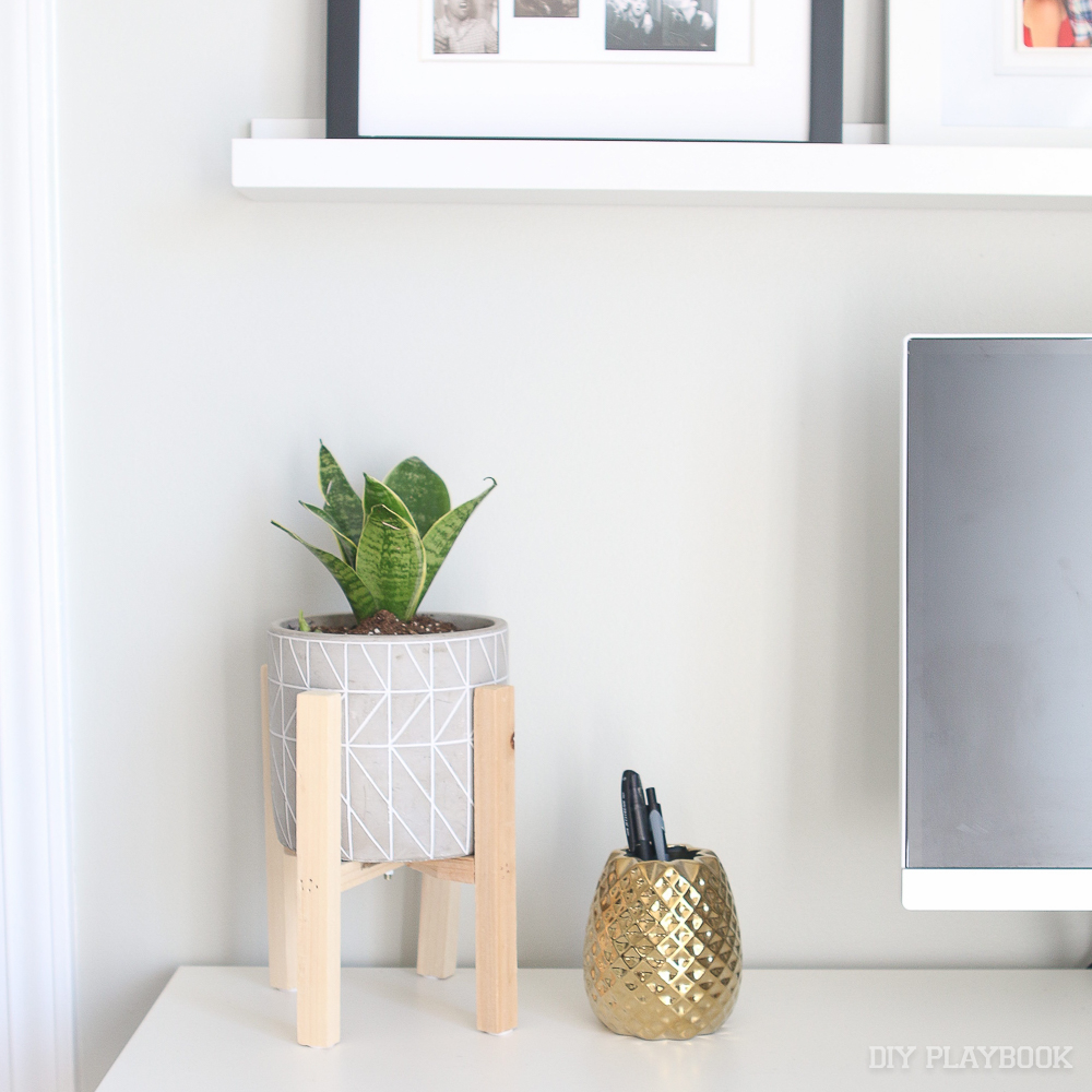planter-desk-indoor-snake-plant-2