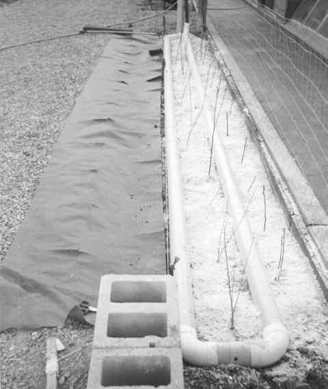 Here's a shot of the planterbed with graywater pipes as they are being installed in an exterior leach field