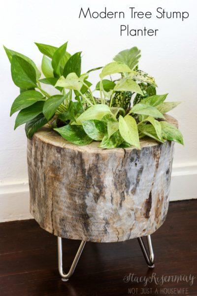 Tree stump indoor gardening planter