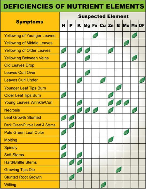 Plant Nutrient Deficiencies Chart