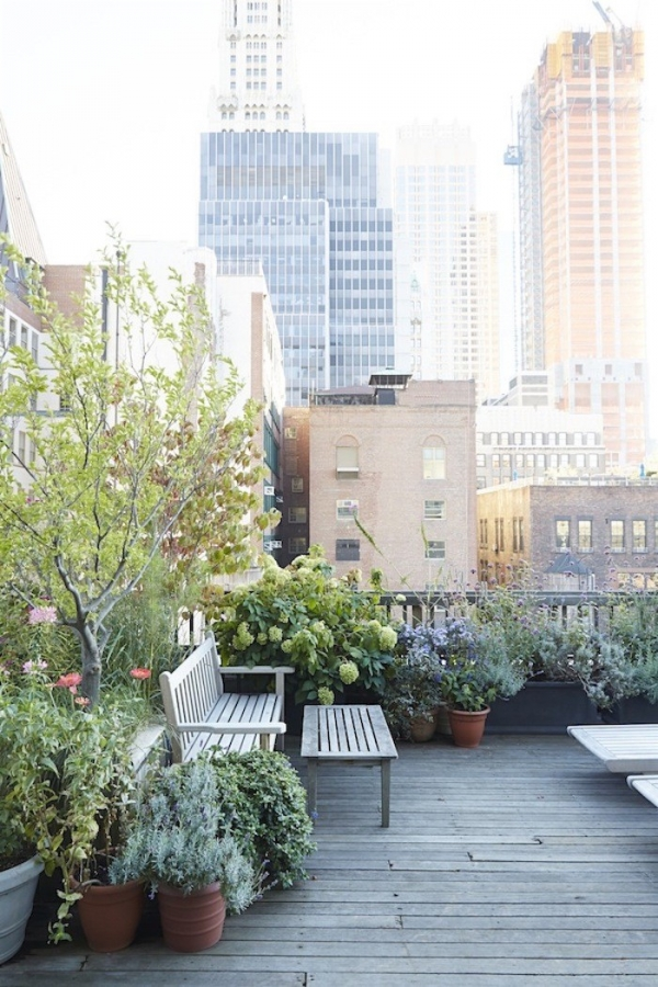 Gardenista_Julie Weiss_Garden_Rooftop Garden New York City