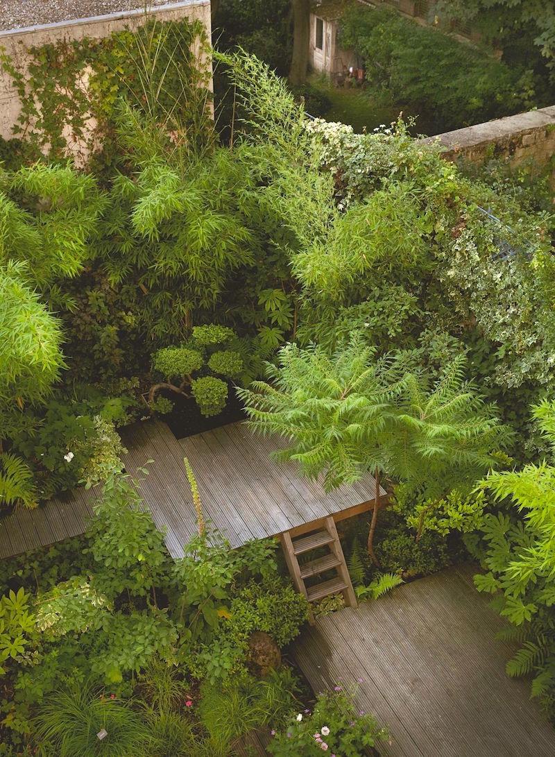 cote maison.fr jardin-luxuriant