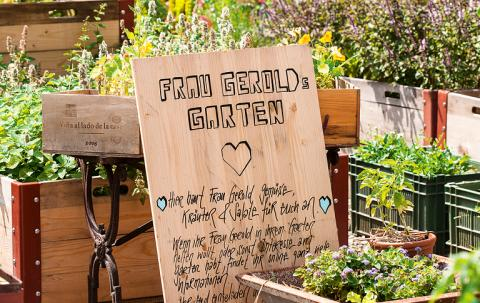 Urban Gardening - Gemeinschaftsgärten in der Stadt