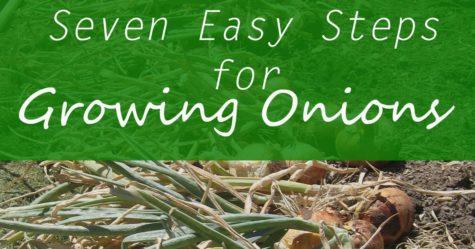 Growing Onions FB