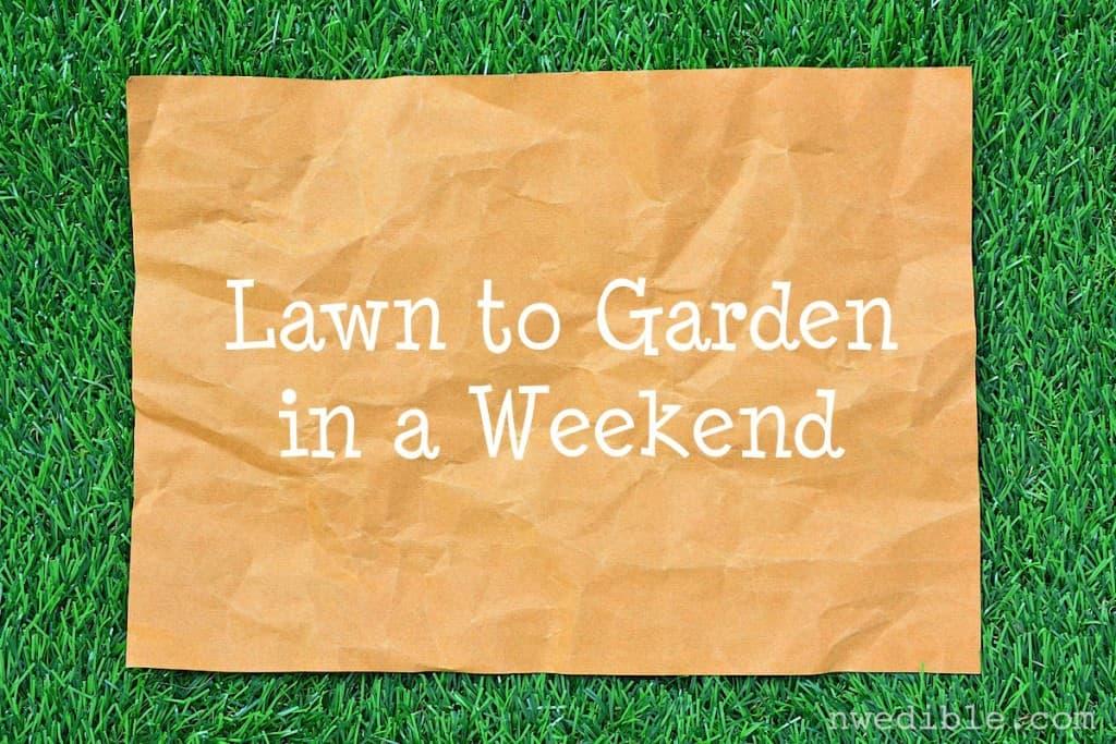 Lawn to Garden34