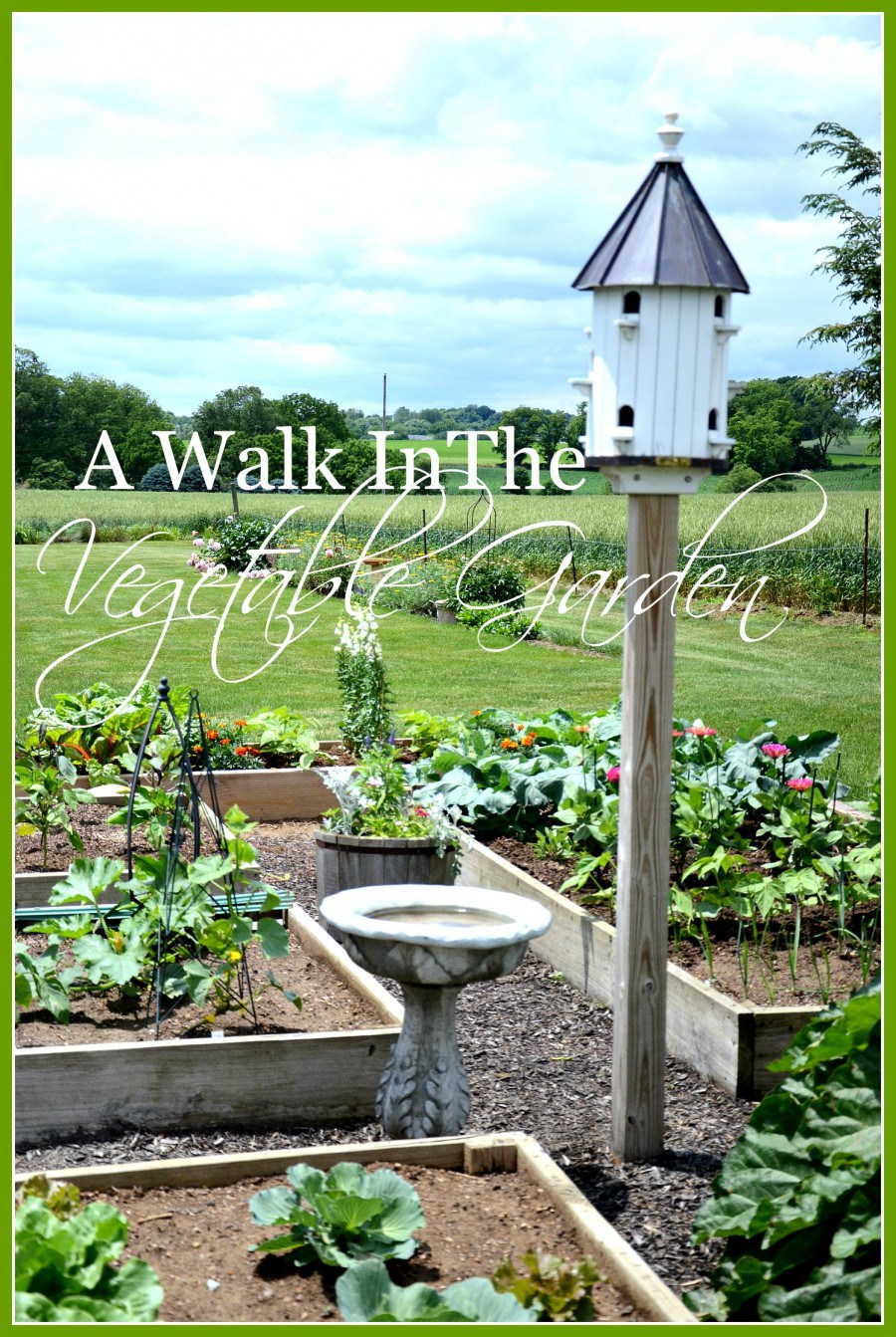 VEGETABLE GARDEN- A walk in the vegetable garden-stonegableblog.com