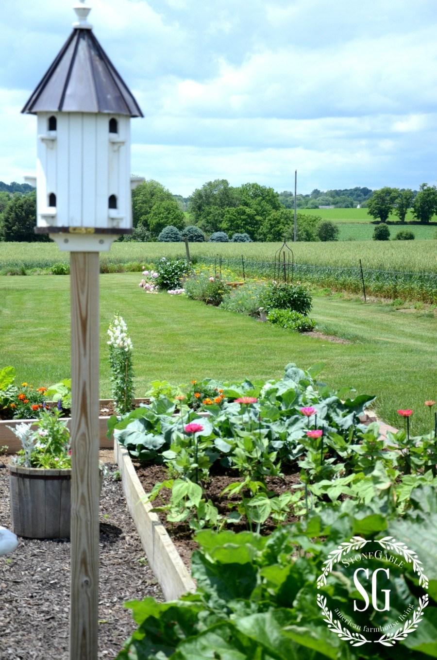 VEGETABLE GARDEN-birdhouse-vegetable garden-stonegableblog.com