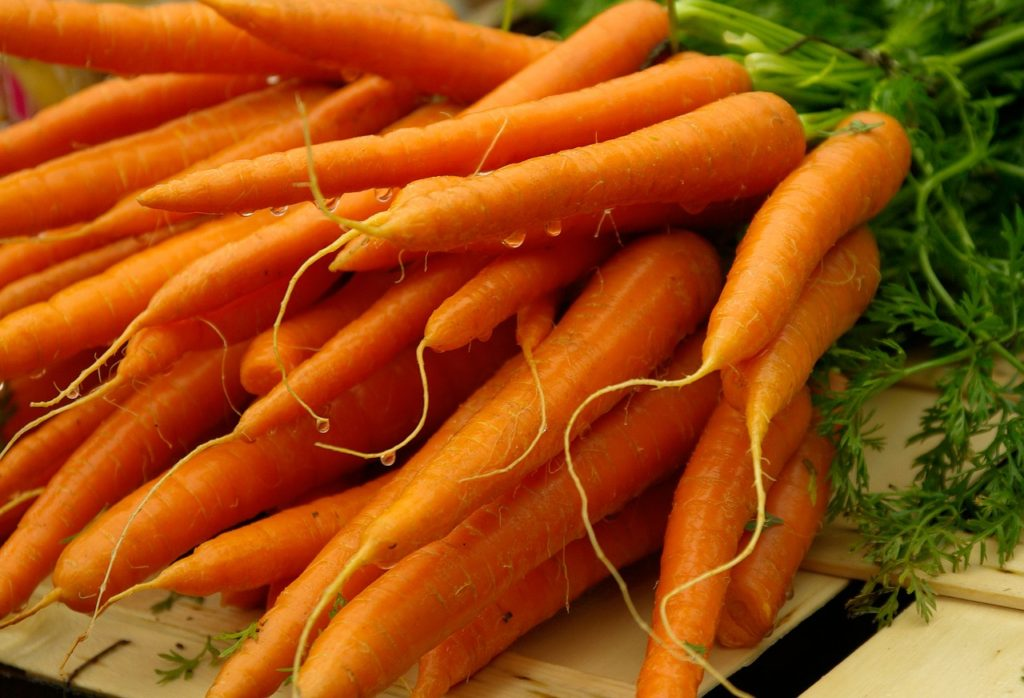 grow your own carrots and store them in your cold room #carrots #garden #preserving